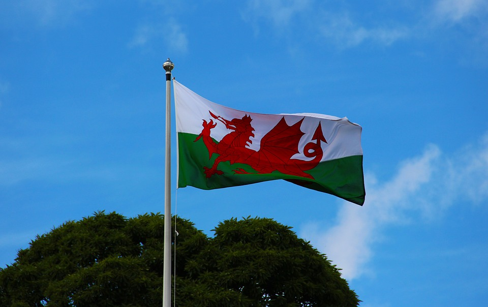 St David's Day is Coming